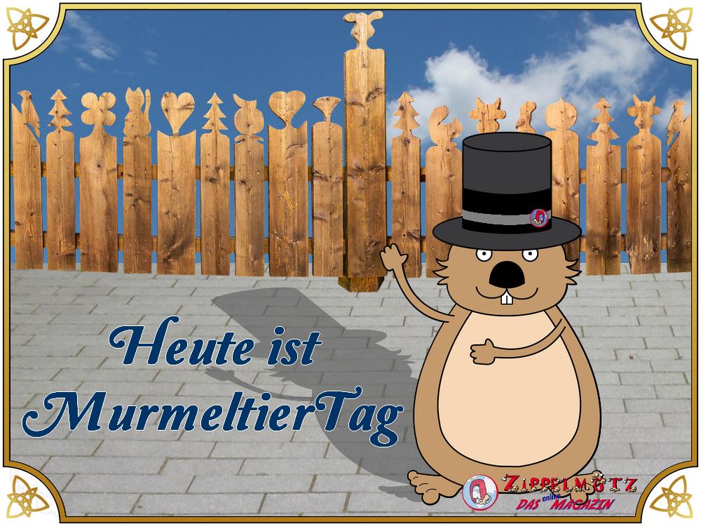 Heute ist Murmeltiertag !!!