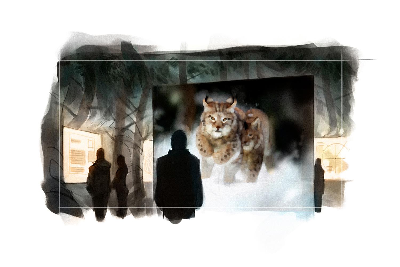 ... und begegnen dem nachtaktiven Jäger auf ungewöhnliche Weise.