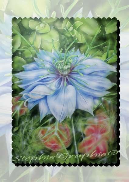 La nigelle de Damas est une plante annuelle de moyenne taille (réalisé sur papier spécial aérographe)