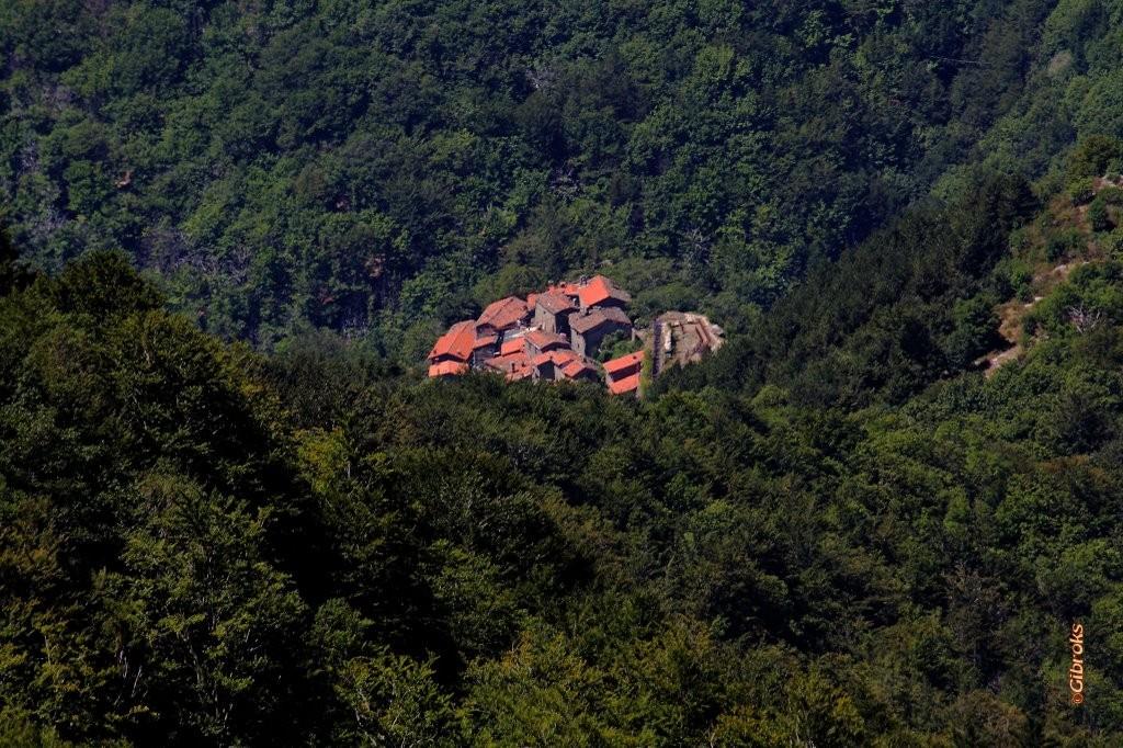 La Rocca Ricciarda vista dall'alto