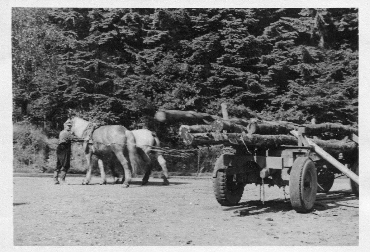Altes Langholzfuhrwerk
