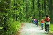 Masurischer Landschaftspark - mit dem Fahrrad entdecken, Radreise, Fahrradurlab in Masuren, Polen