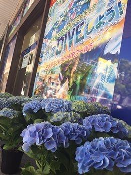 ハウステンボス あじさい 廿日市 広島駅