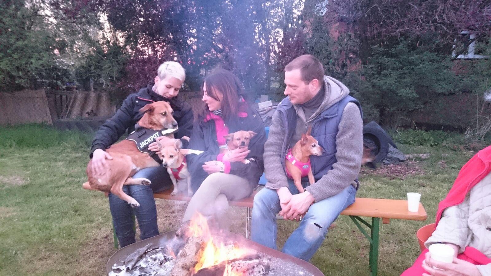 Lagerfeuer mit den Vierbeinigen Freunden genießen