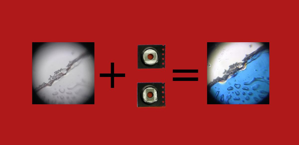 Polarisierendes Foldscope
