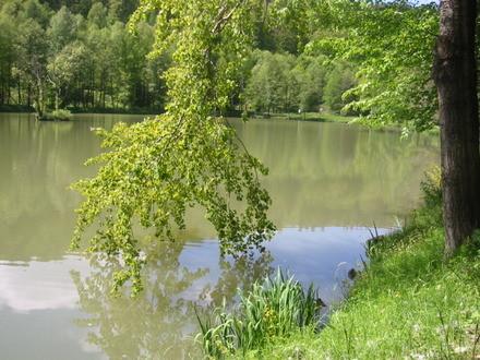 Aubachseen bei Frammersbach
