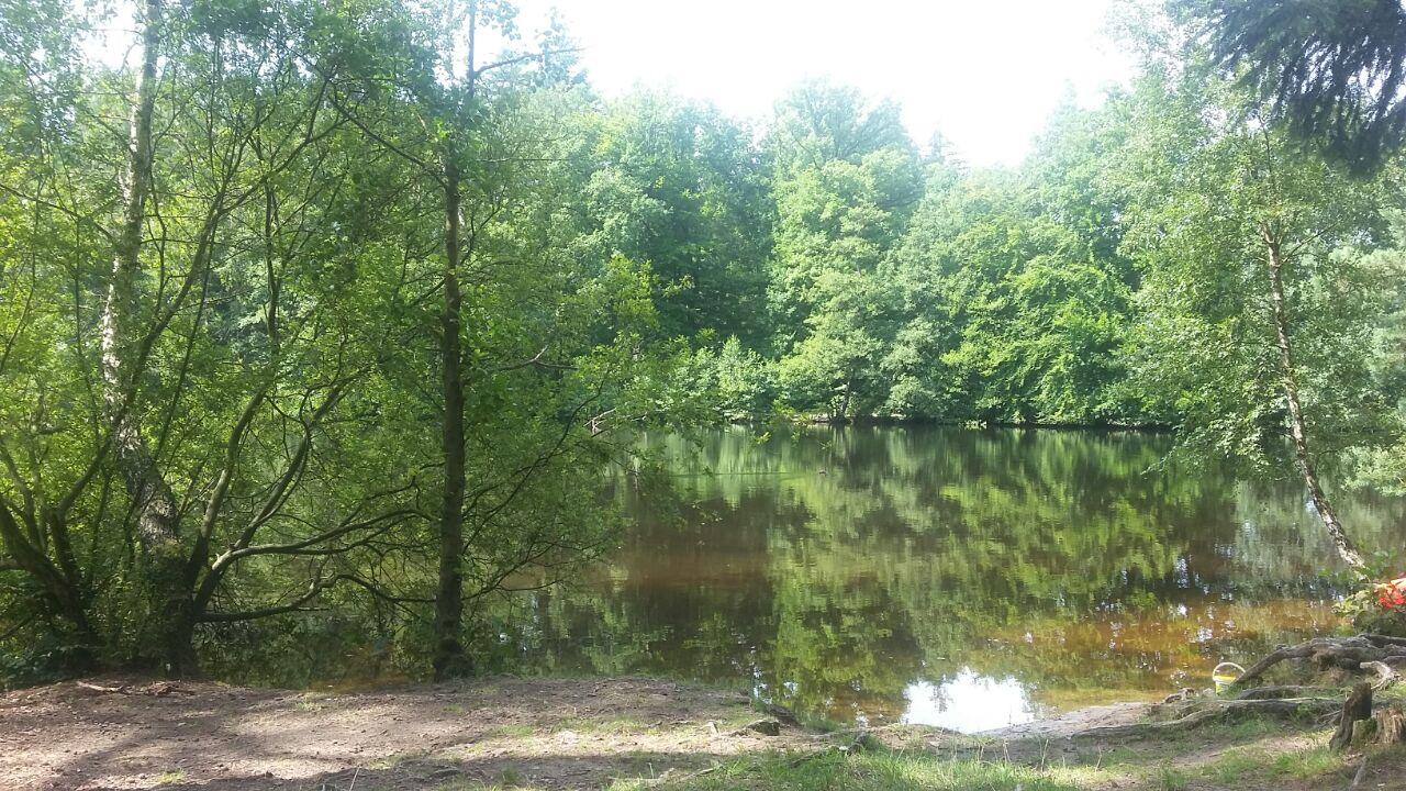 Wiesbütt-See und Moor