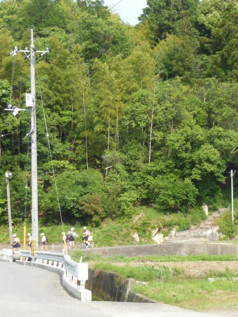 ふれあいセンターに行く道。後ろの緑が天王神社の森。