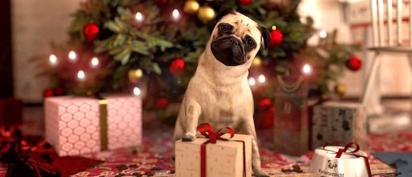 pug christmas cute presents christmas tree