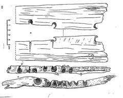 Les plus anciennes planchettes et forets à feu archéologiques, Grotte de Guitarerro, Perou, d'après Lynch, © Dessin Jacques Collina-Girard