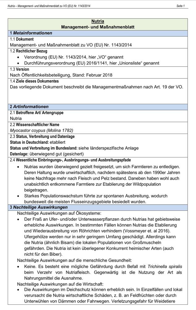 Management und Maßnahmenblatt Nutria