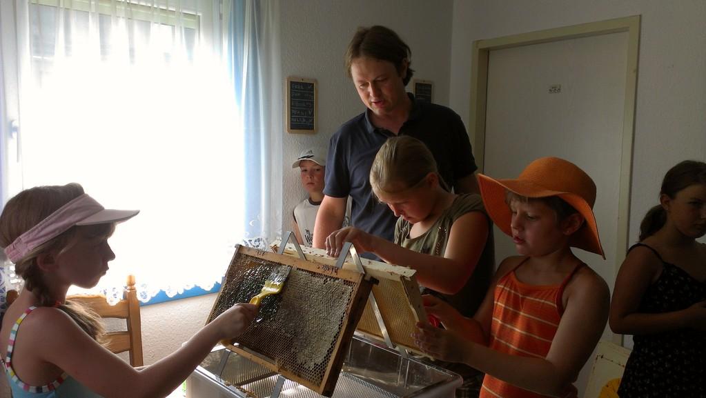 Die 1. Waben werden abgeschabt zur Honiggewinnung