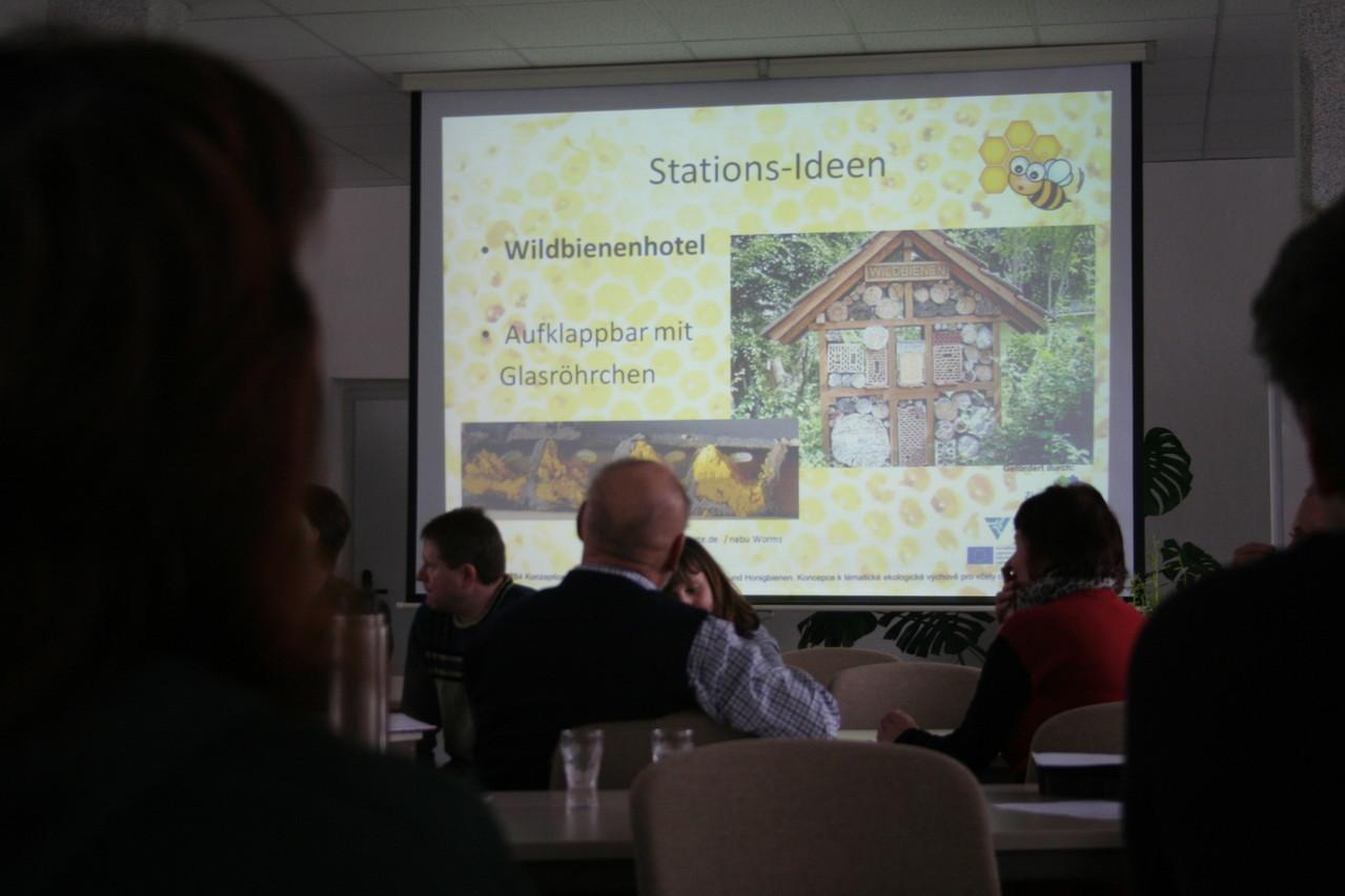 Bienenerlebniswelt - Ideensammlung