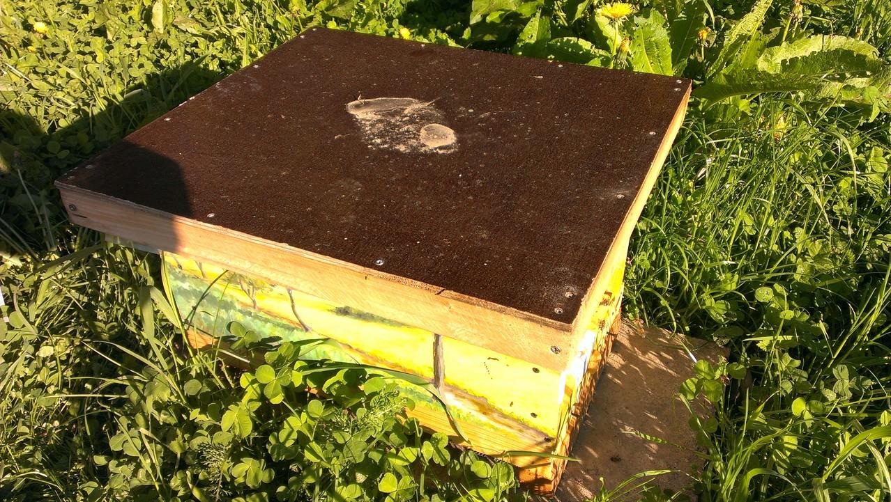 Unsere Bienenvillen