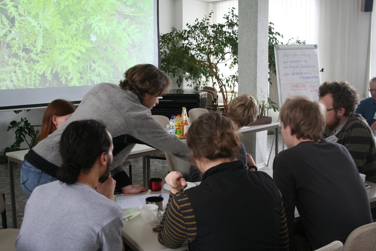 Ideensuche in den Arbeitsgruppen