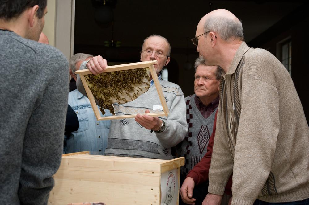 Nisthilfen und Artenschutz-Workshop (c) Alexander Schlotter | Biene sucht Blüte