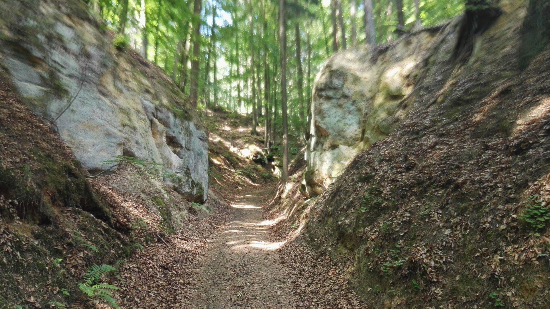 Schlottberg - Schlucht