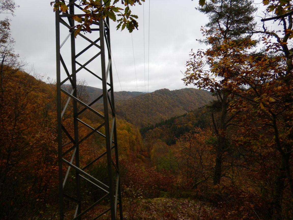 Saarschleifetrail - Zur Steinbachtalschlucht