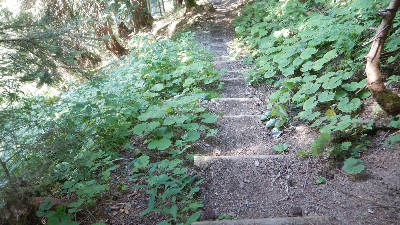 Danach folgte ein unangehmer Schotterweg der sehr Steil nach unten ging...