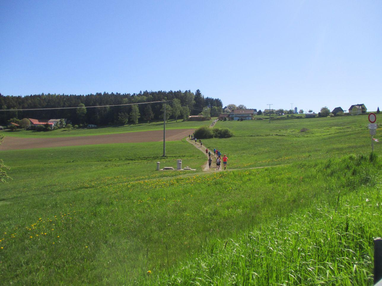 Pfreimdtaltrail