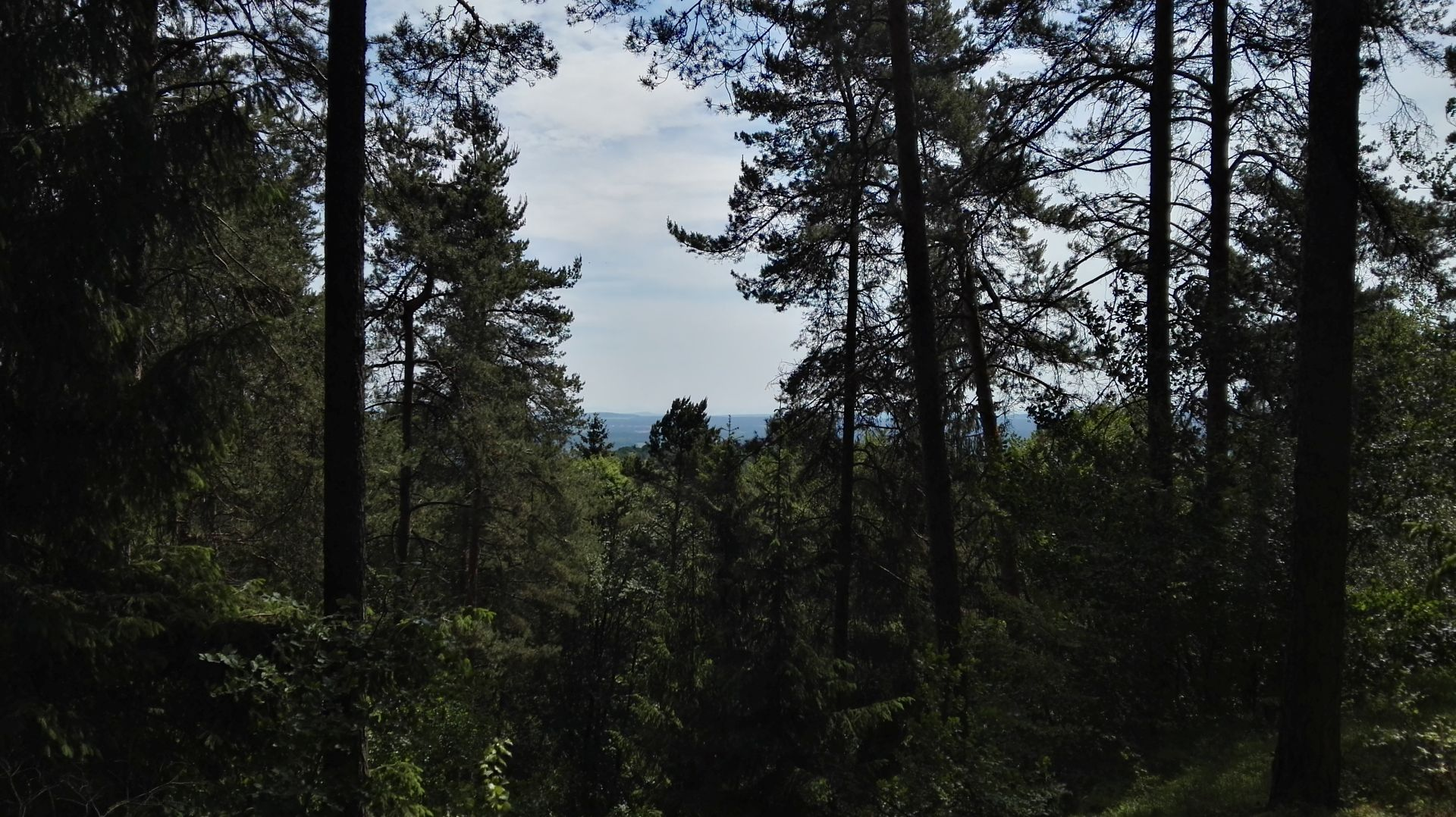 Schlottberg - Gipfel