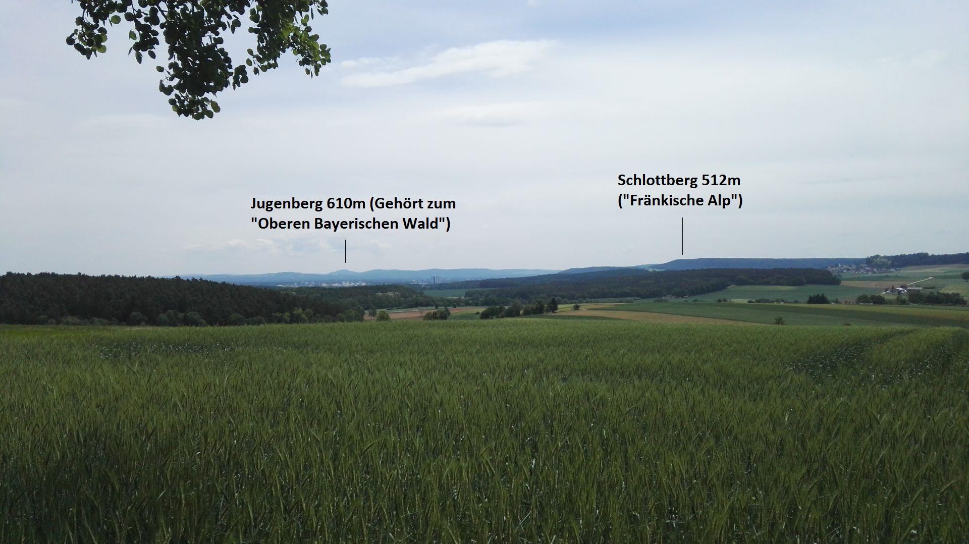 """Aussicht vom Pittersberg auf die """"Südliche"""" Seite"""