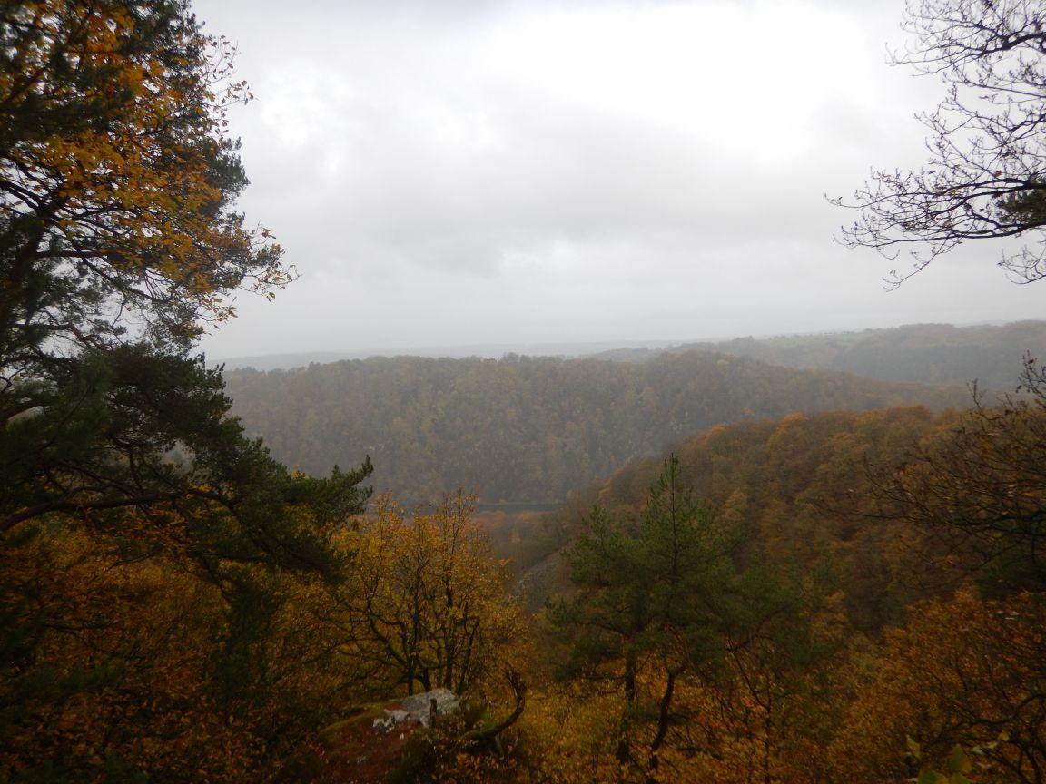 Saarschleifetrail - Abermals Bergauf