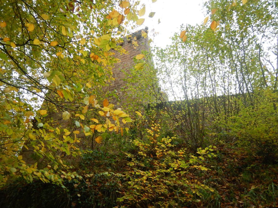 Saarschleifetrail - Burg Montclair