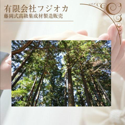 有限会社フジオカ 高知県安芸市伊尾木1836-4