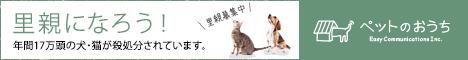 横浜、中区、南区、ペットシッター、ペット、横浜市、お世話、お留守番、キャットシッター、磯子区、猫、犬