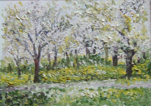 Blühende Obstbäume 1998