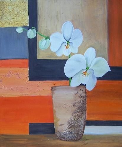 Orchideen 2011