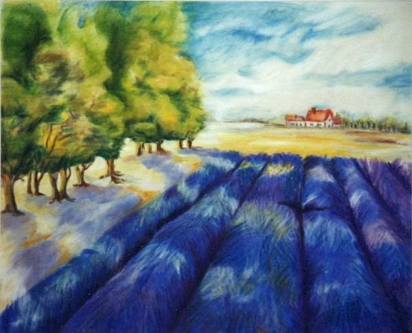 Lavendelfeld 1998