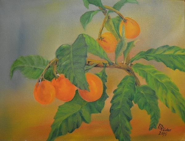 Nispero - Spanische Frucht 2018