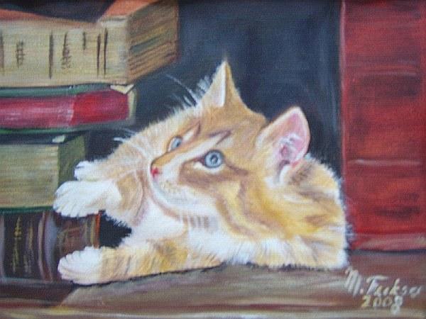 Katze in Bibliothek 2008