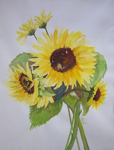 Sonnenblumen 2010