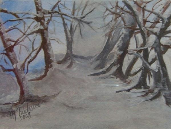 Waldweg im Winter 2008