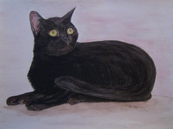 Schwarze Katze 1996