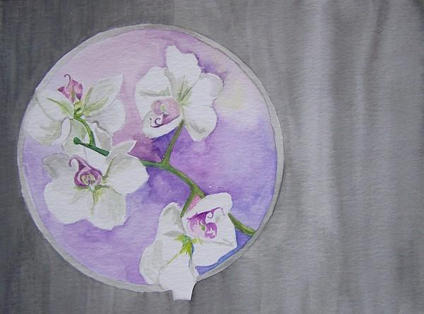 Orchideen 2010