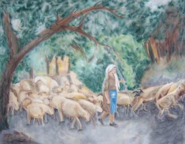 Schafherde 1996