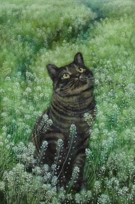 猫道-僕だけの- 油彩 P6