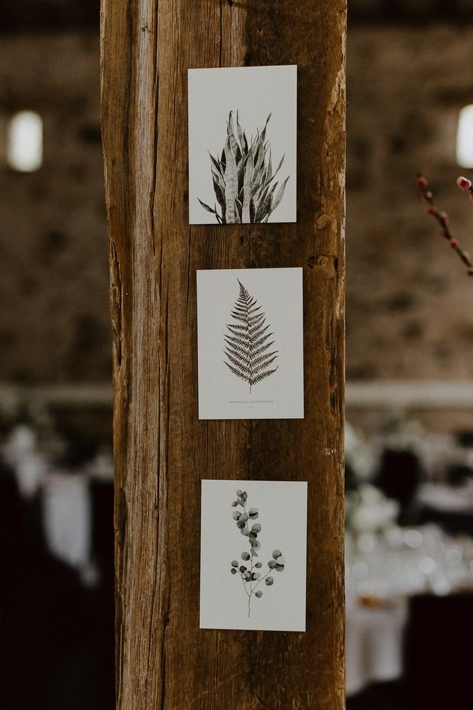 Histoires Botaniques - Mariage - Botanique