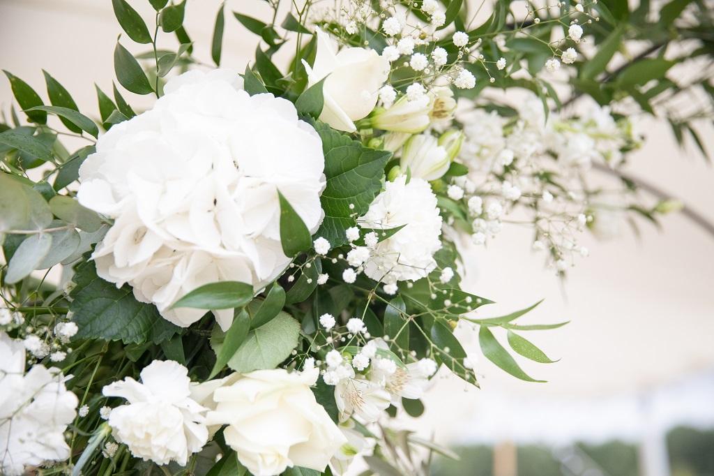 Histoires Botaniques - Mariage - Blanc & Vert