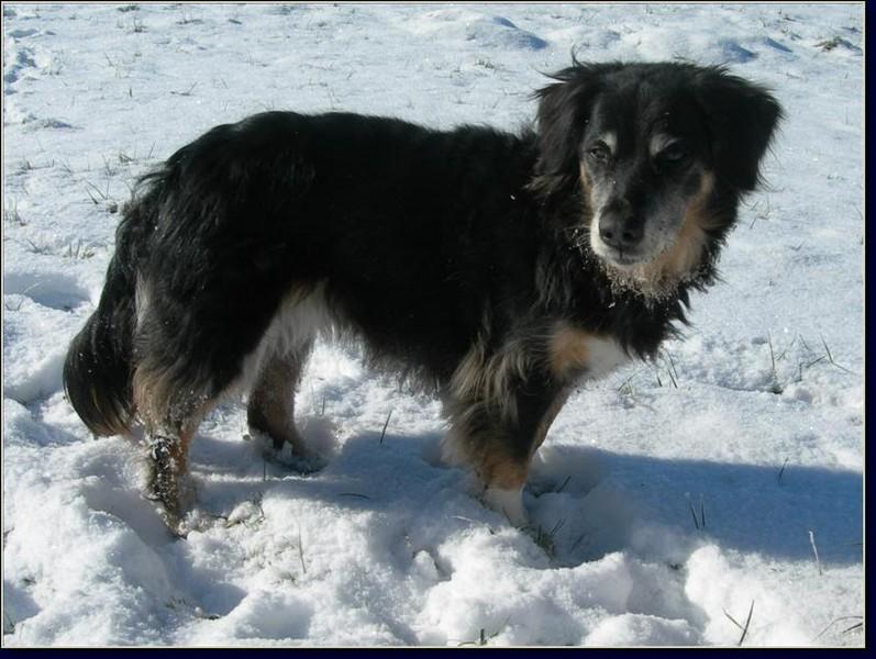 Winter 2007-08