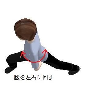 足はそのままで腰を左右に回す