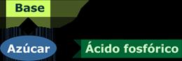 esquema ácidos nucleicos