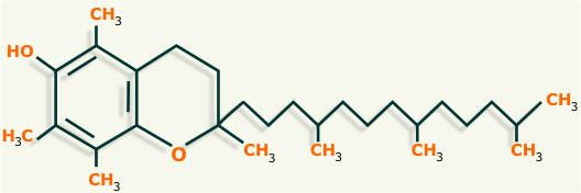 vitamina e estructura