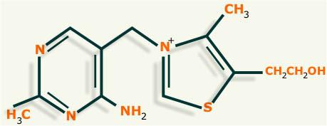 vitamina b1 estructura