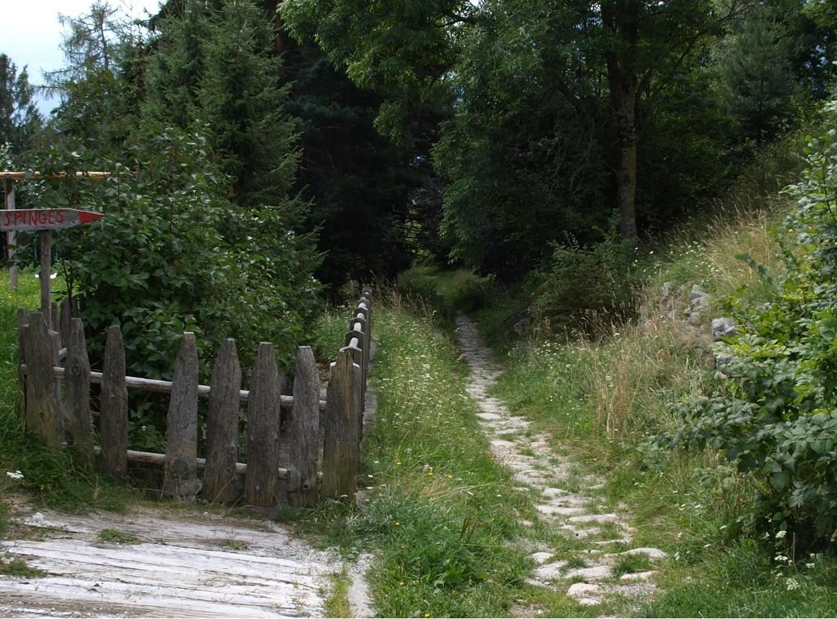 Teil des alten Steinplasterweges