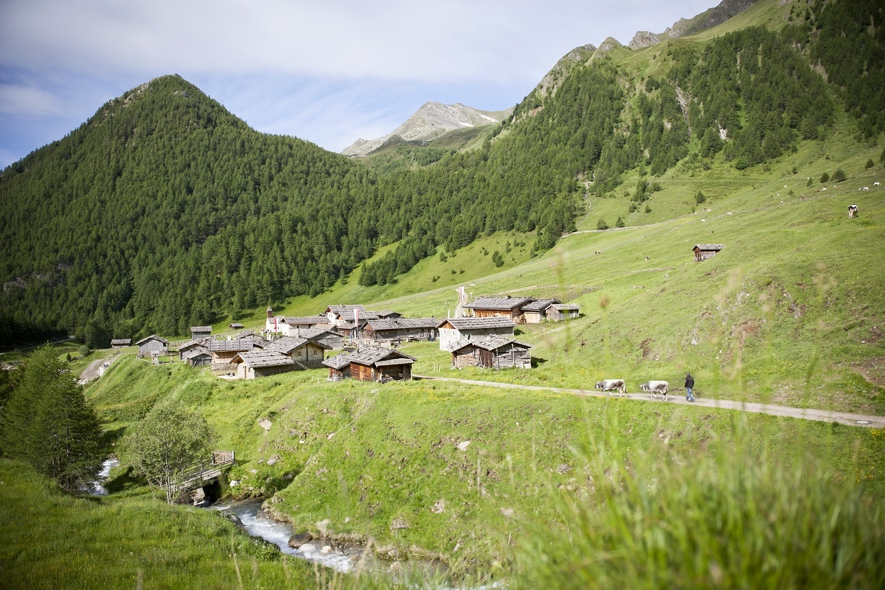 Die Fanealm in Vals